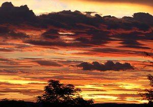 Tkabies Camping | Keimoes | Kakamas | Northern Cape | Green Kalahari