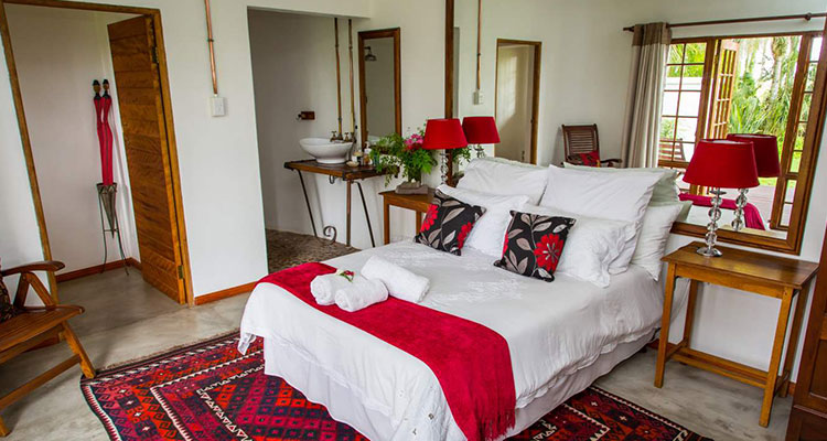 African Vineyard Kanoneiland | Bed and Breakfast Guesthouse - Camping and Lodges Accommodation | Northern Cape Accommodation | Green Kalahari | South Africa